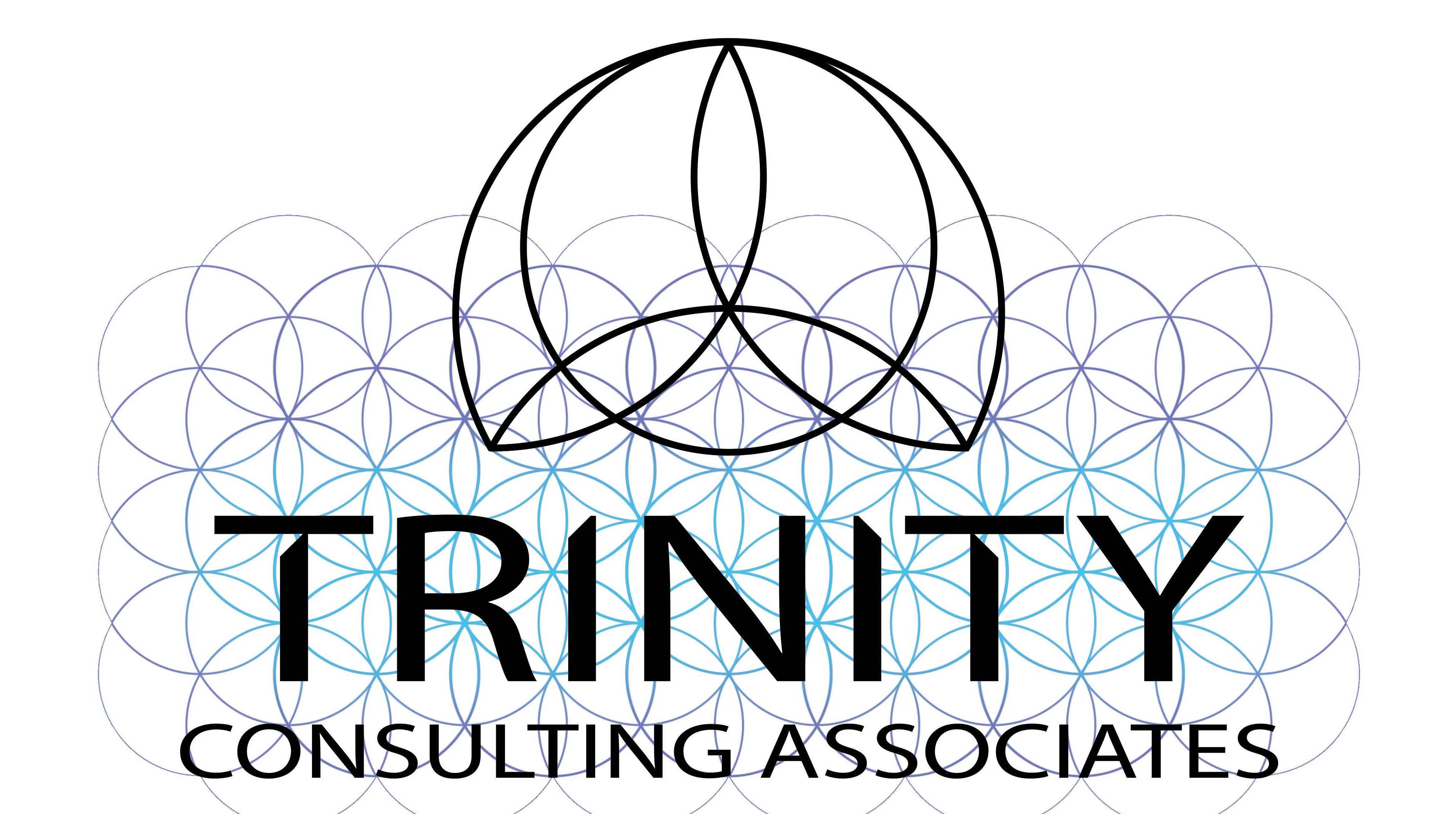 Trinity Consulting Associates
